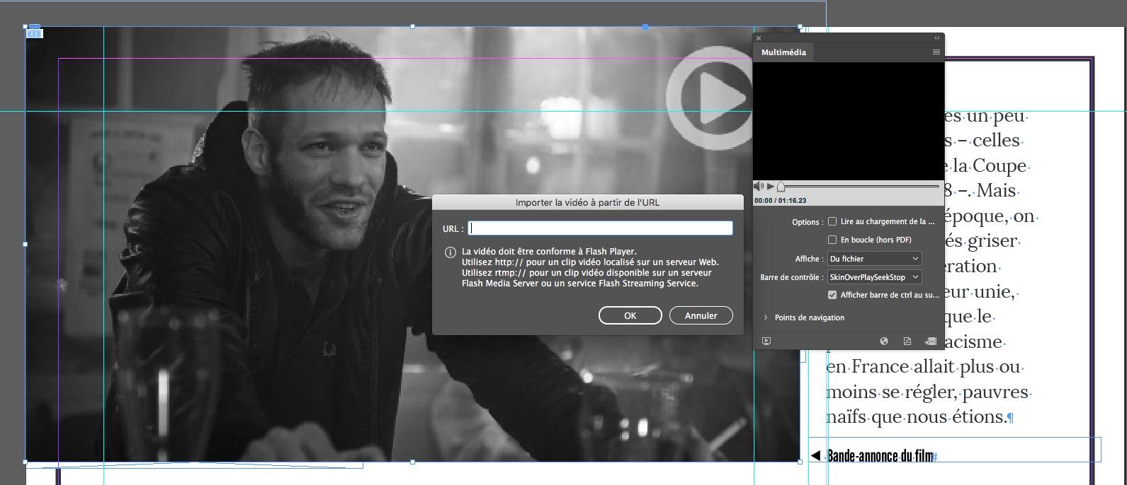 Capture d'écran InDesign – Panneau multimedia, vidéo à partir d'une URL